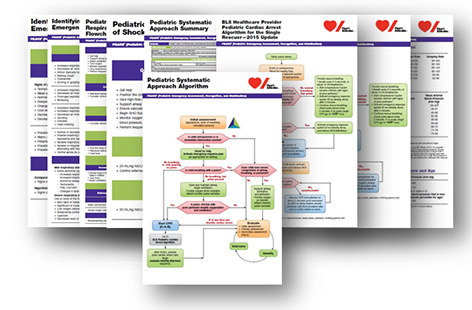 2015 Pediatric Emergency Assessment, Recognition, and Stabilization (PEARS) Poster Set - English