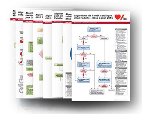 2015 ACLS Emergency Crash Cart Card Set - French