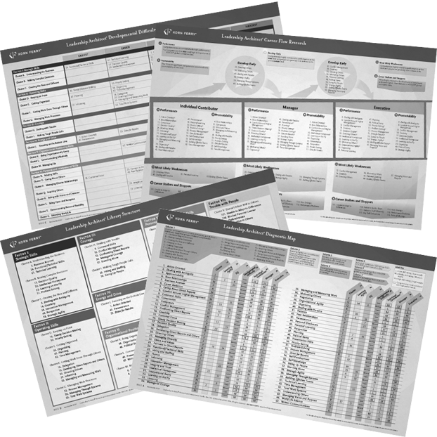 Leadership Architect® Research and Interpretation Guide—B&W (25 pack) English